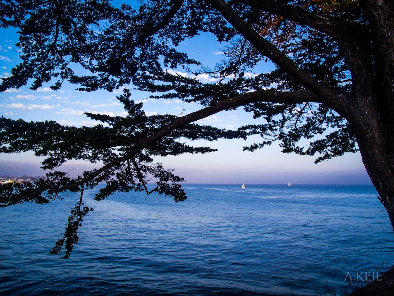 Santa Cruz Beach #20100728-0140