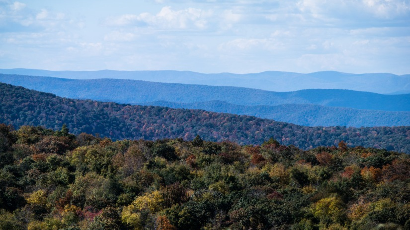 Autumn in Skyline Drive, Virginia