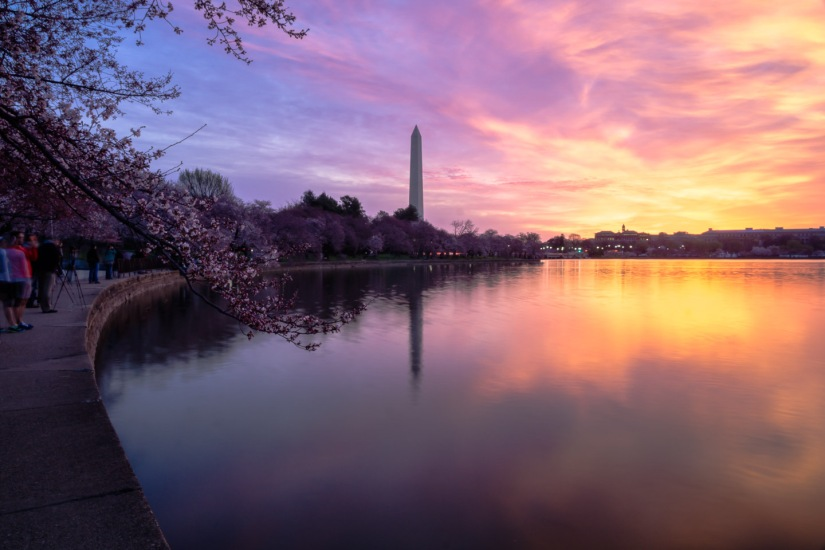 How to Capture the Cherry Blossom Festival inDC